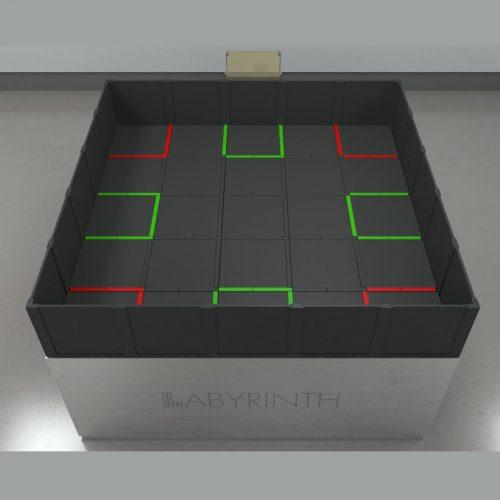 Pseudodoor 8 Arm Radial Maze