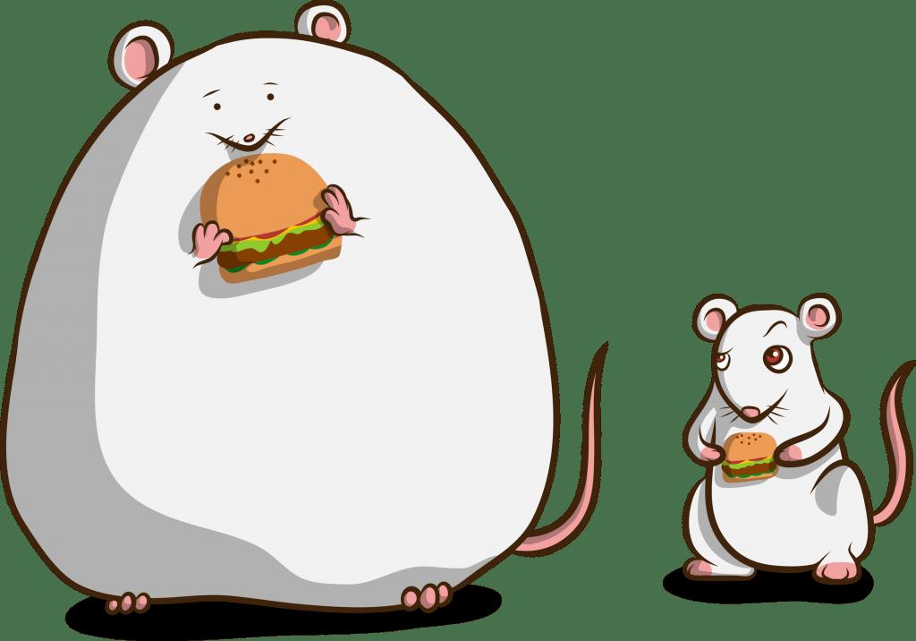 ob/ob mice