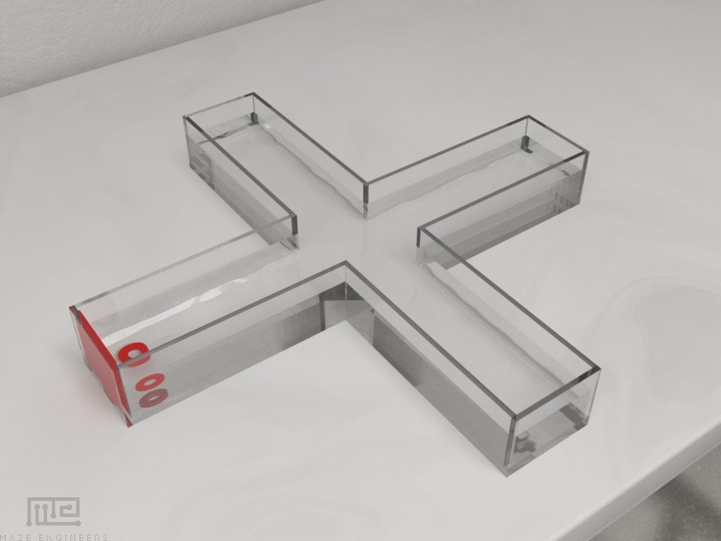 MazeEngineers Zebrafish T maze allows for choice experiments