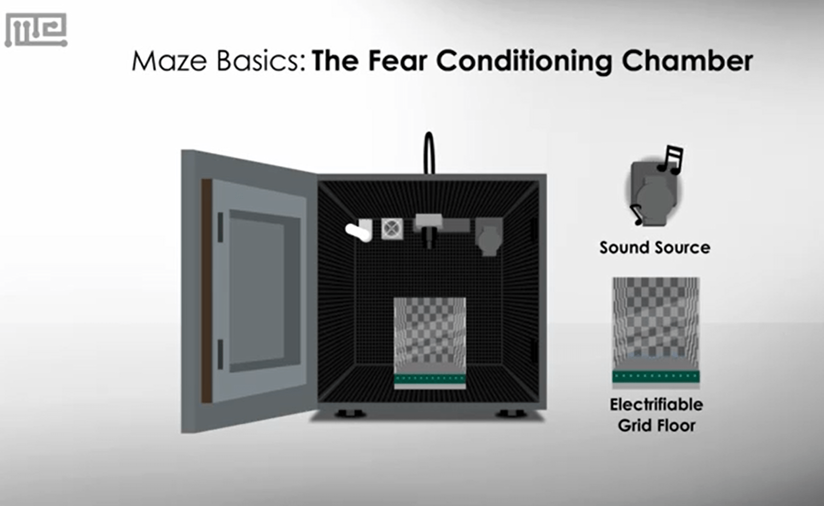 fear conditioning protocol