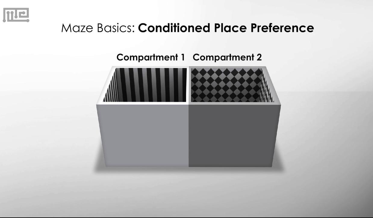 Place Preference Test