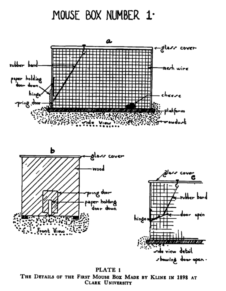 history of behavioral testing with maze mouse box