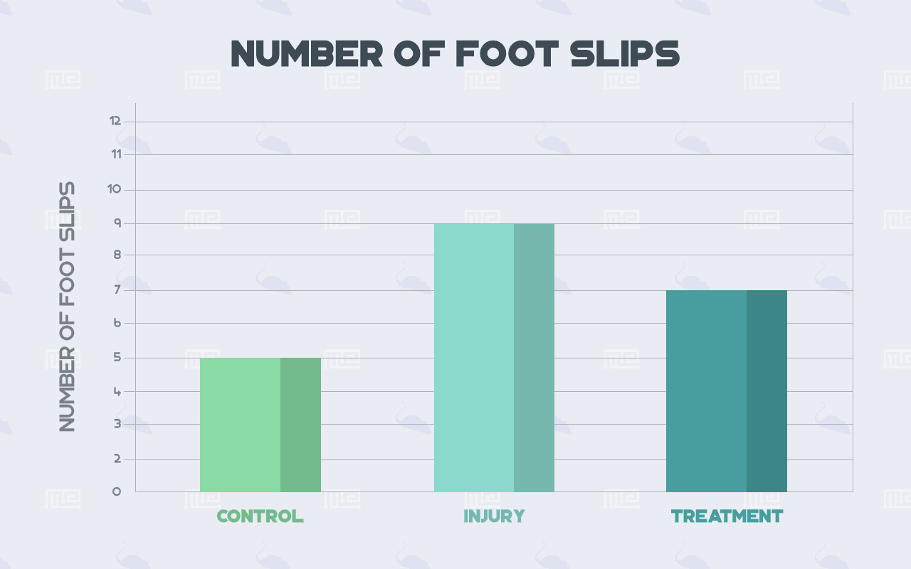 motor balance test number of Foot Slips