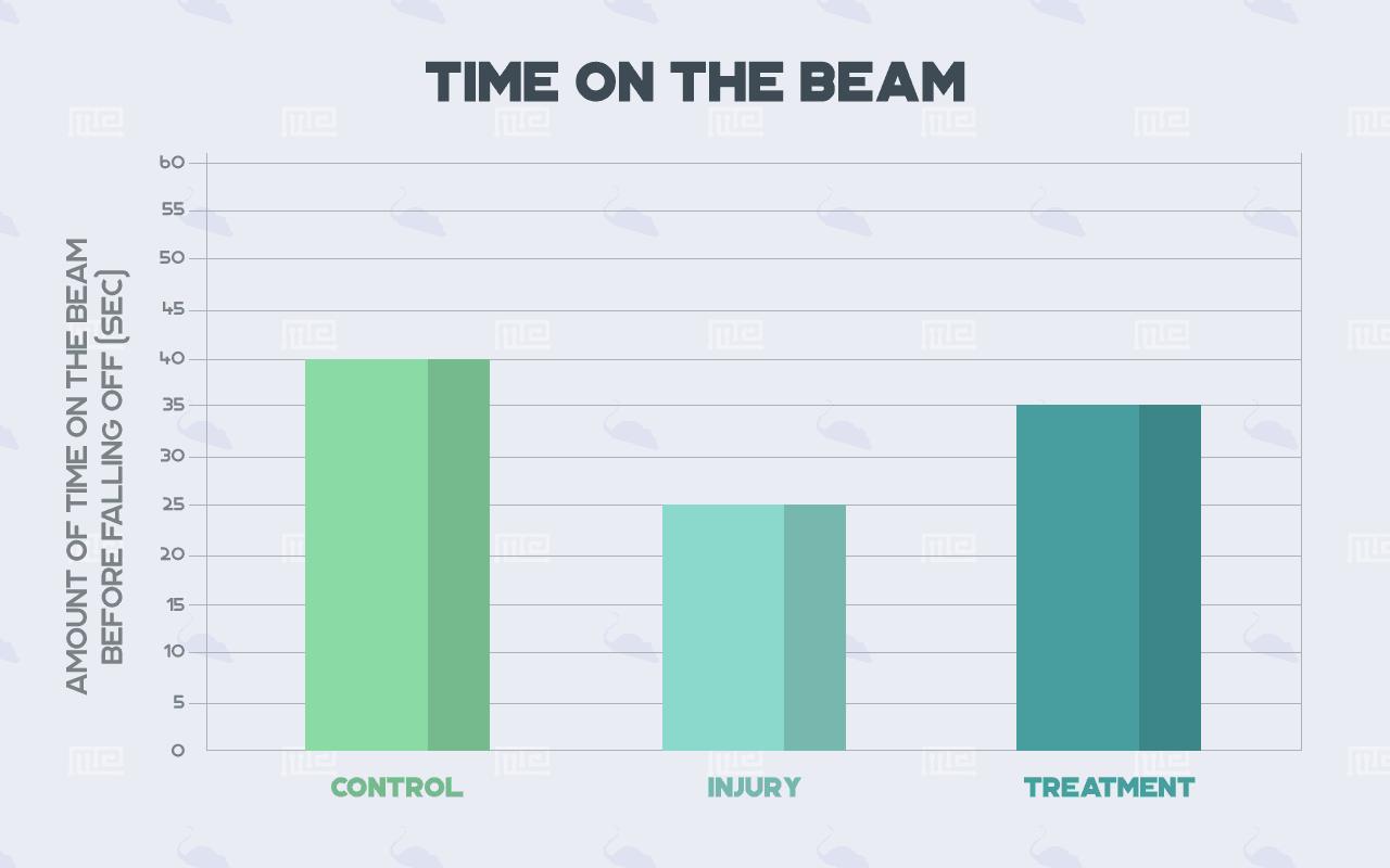 motor balance test time on balance beam