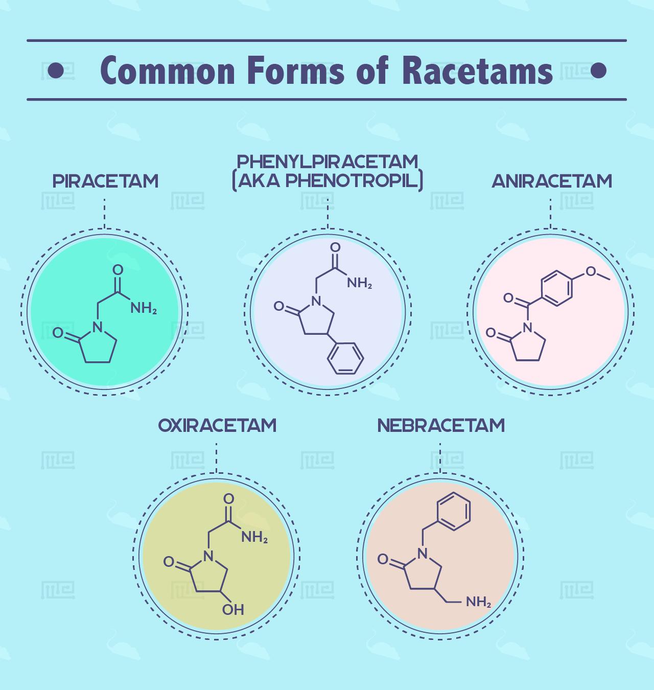 Racetam Effects on Behavior