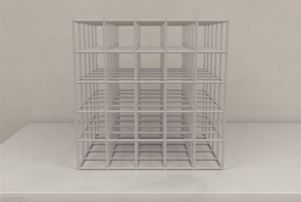 The cubic maze is used to compare the spatial cognitive ability of hummingbirds and rodents in a three-dimensional space