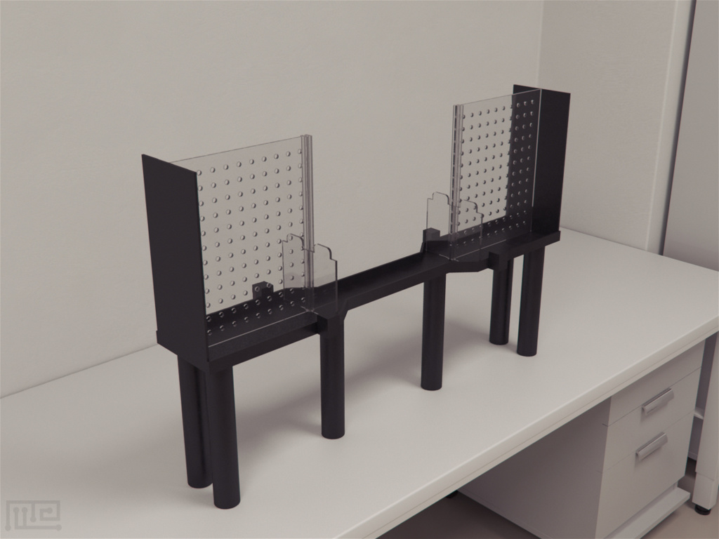 Fictive reward maze is an elevated liner track that has dimensions of 100cm x 16cm x 30cm.