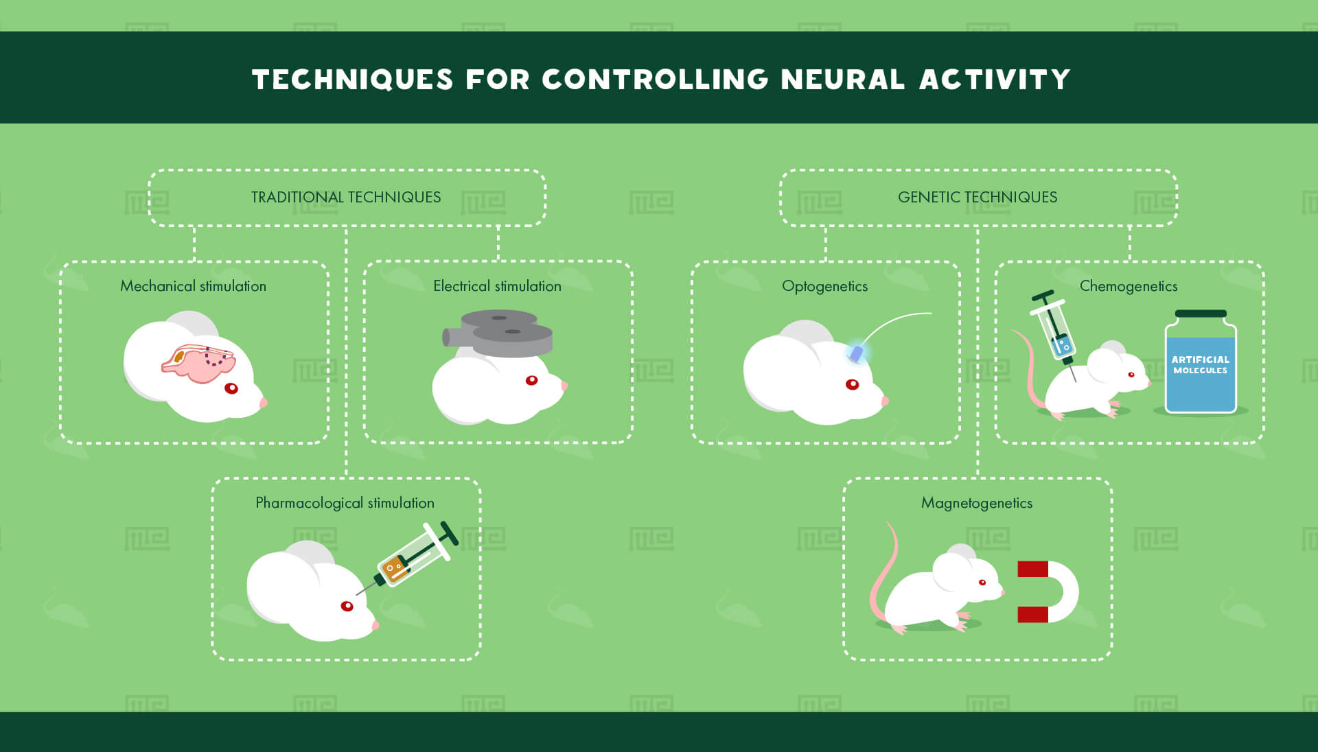 techniques for controlling neural circuit