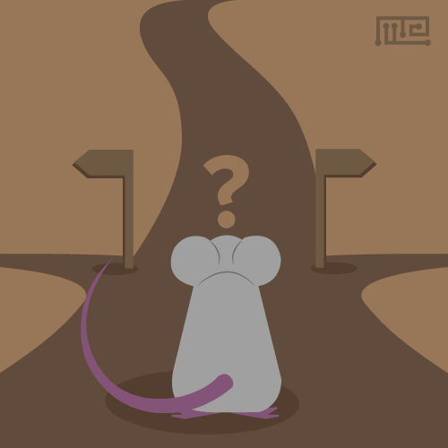 cover for activity testing in mice