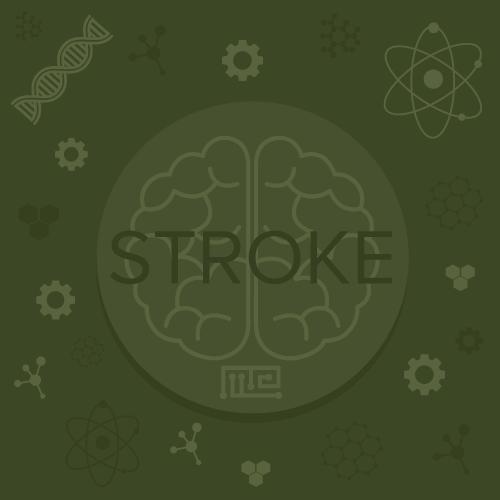 Disease-Models-stroke