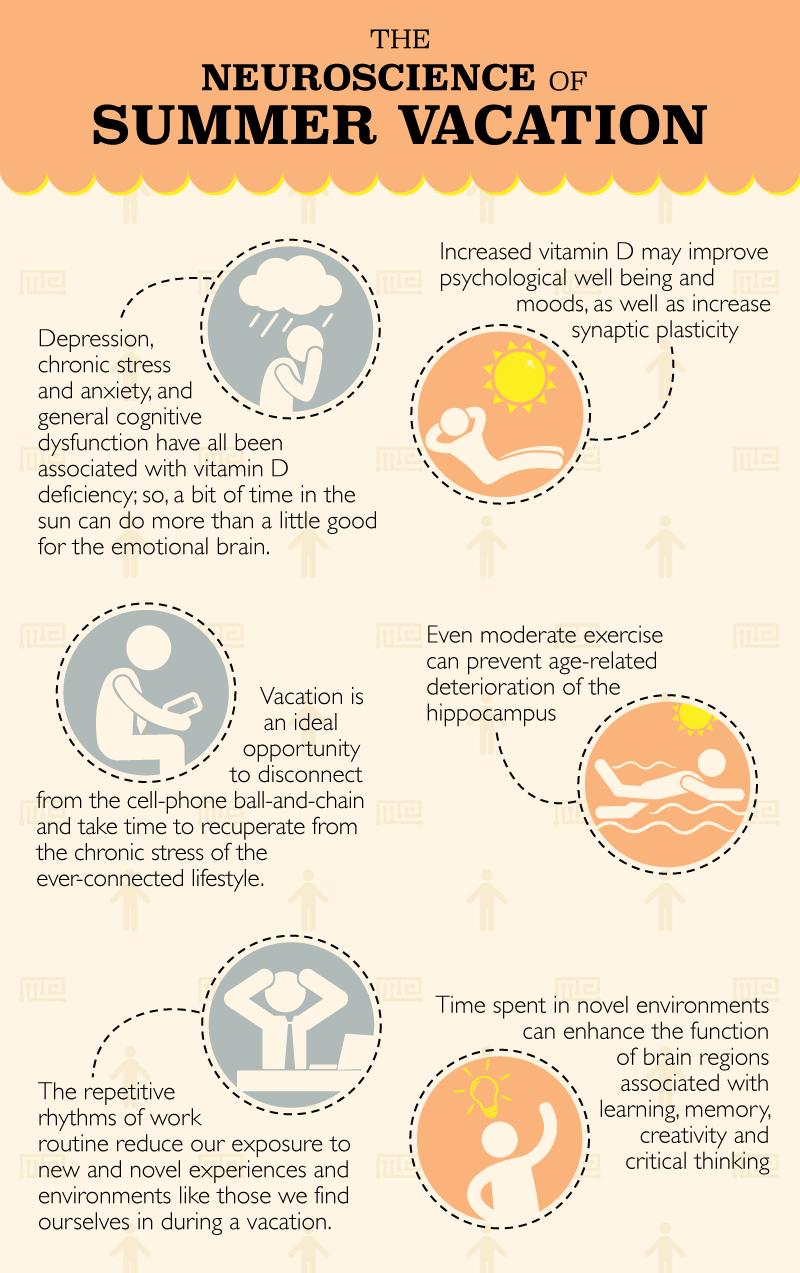 neuroscience of summer vacation