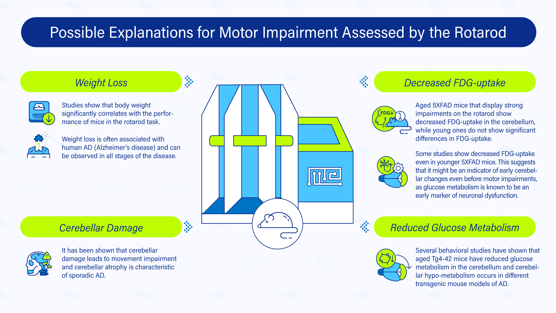 Possible explanations for motor impairment assessed by the Rotarod