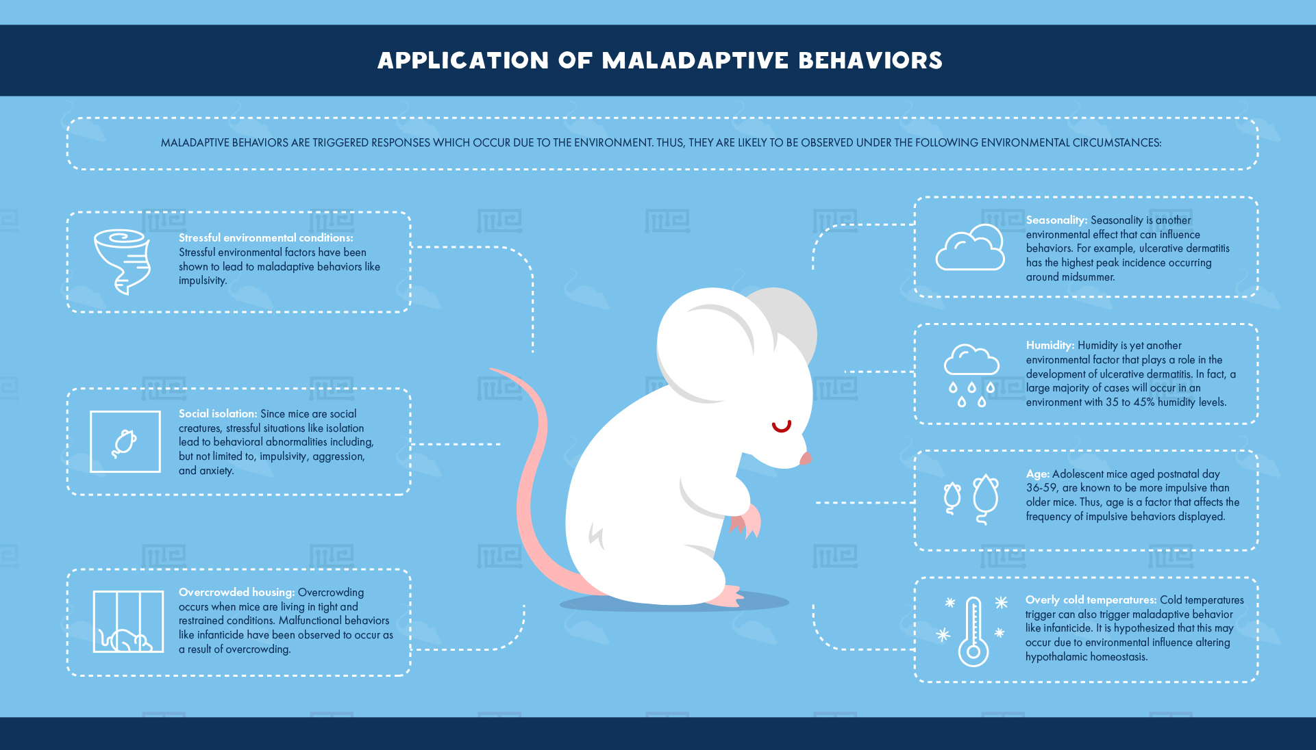 Application of Maladaptive Behaviors