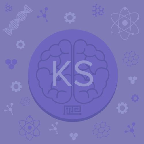 Korsakoff syndrome disease model