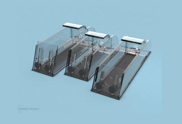 Rabbit Immobilizer – Acrylic Model