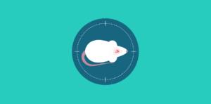 Rodent Craniotomy Protocol