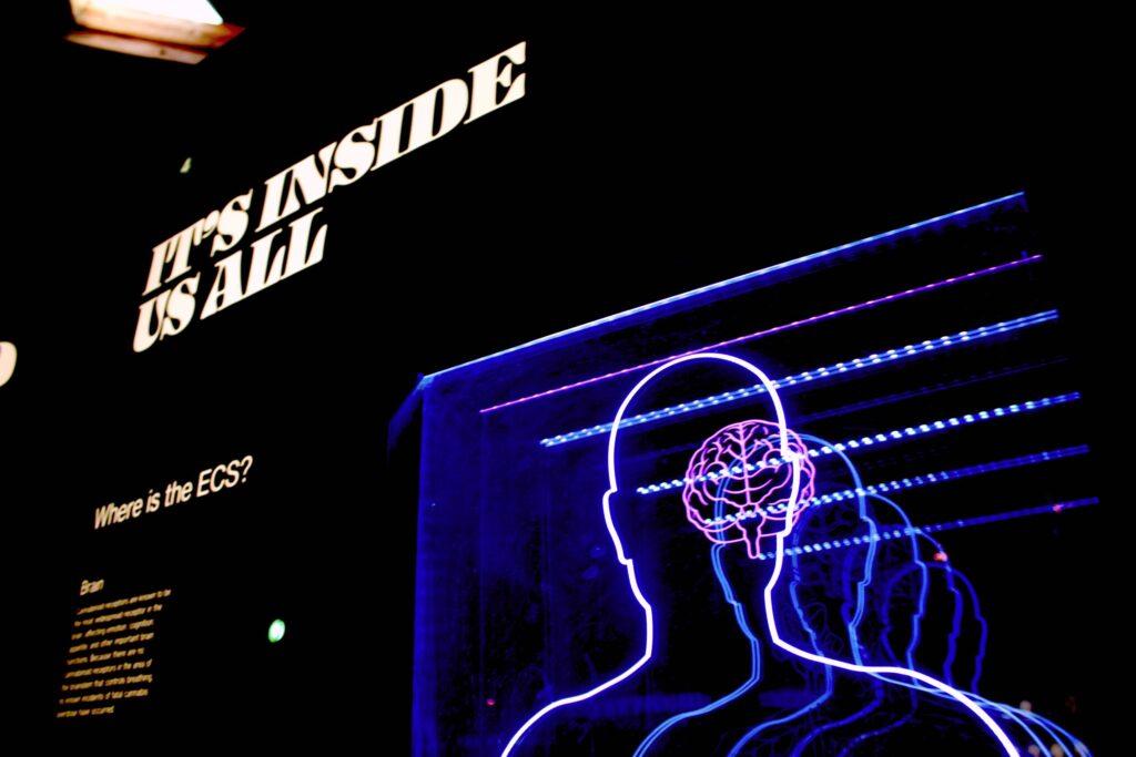 Brain/mind futurist decorative image